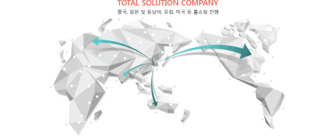 TOTAL SOLUTION COMPANY